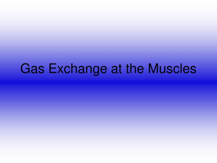gas exchange at the muscles n.