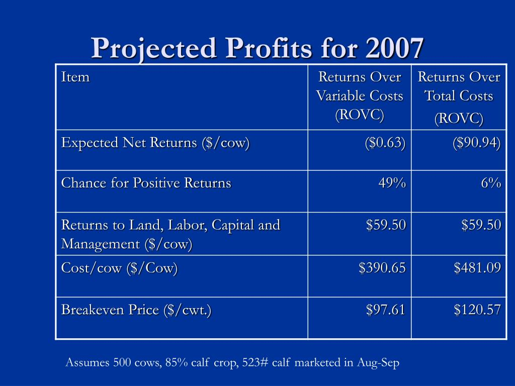 Projected Profits for 2007