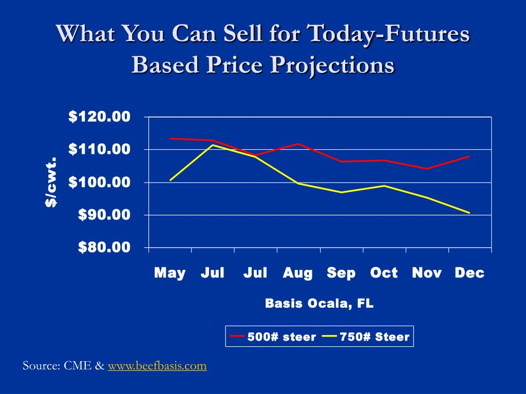 What You Can Sell for Today-Futures Based Price Projections