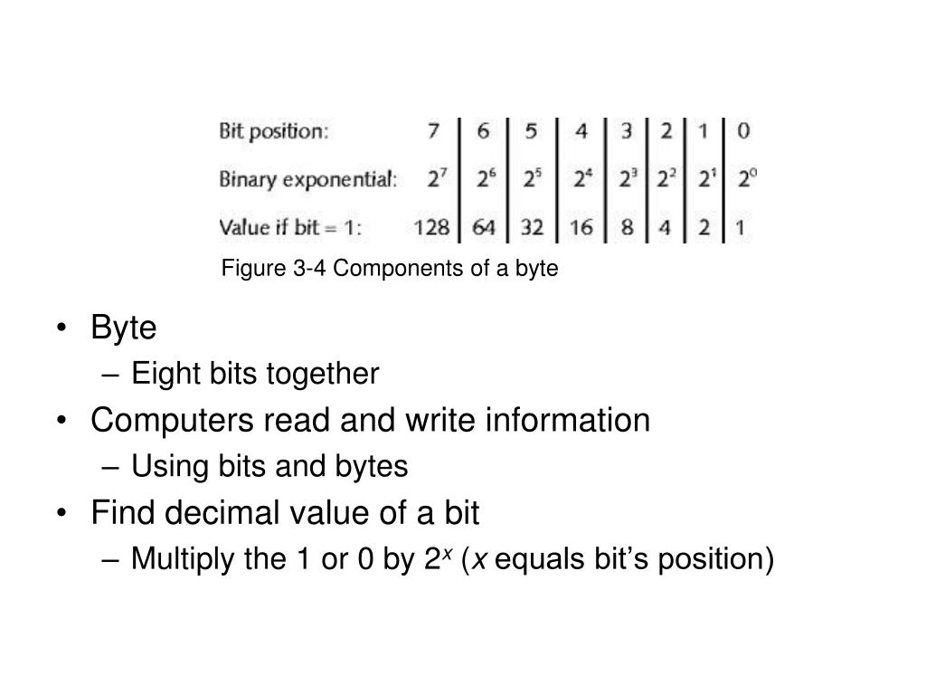 Figure 3-4 Components of a byte