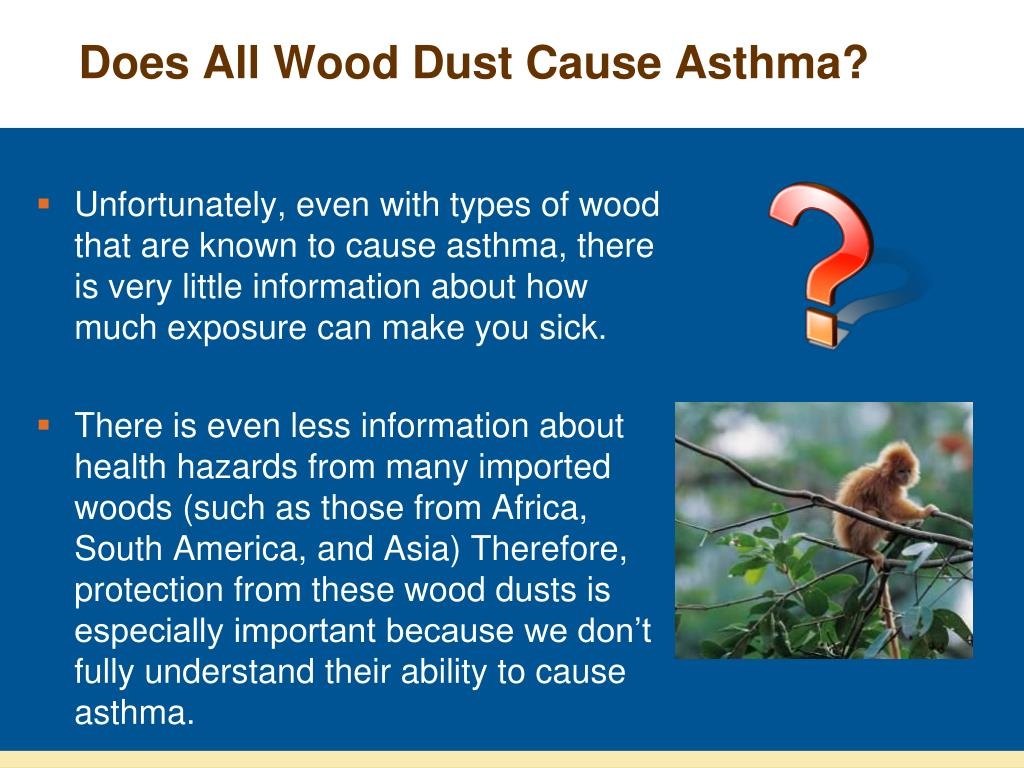 Does All Wood Dust Cause Asthma?