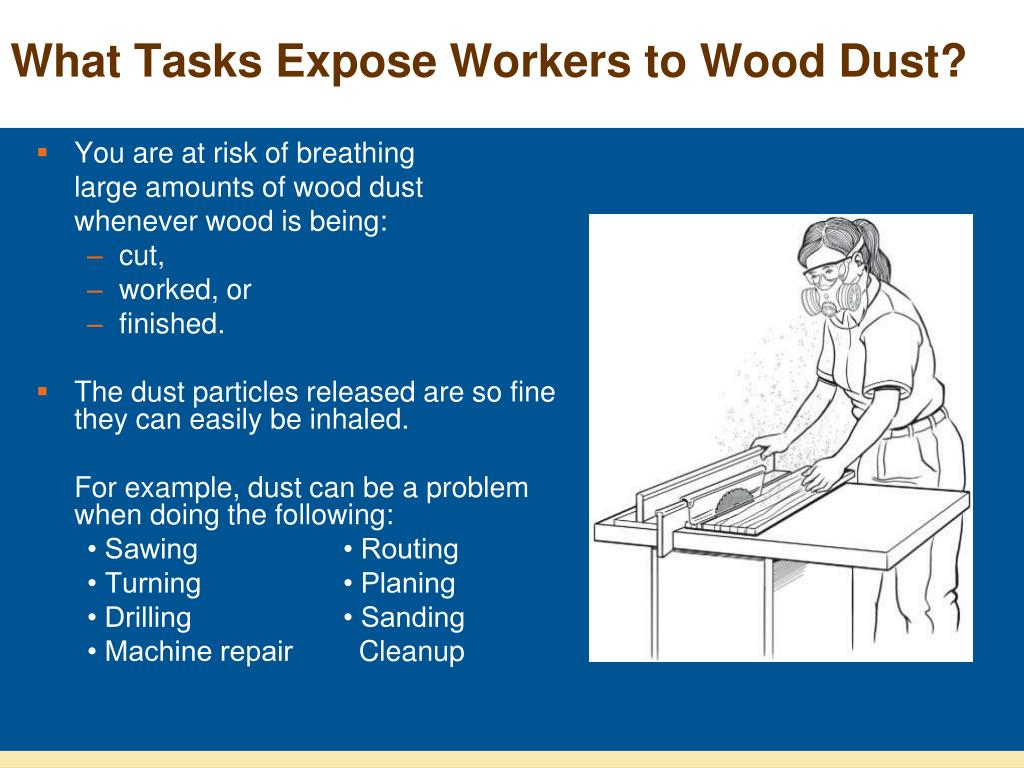 What Tasks Expose Workers to Wood Dust?