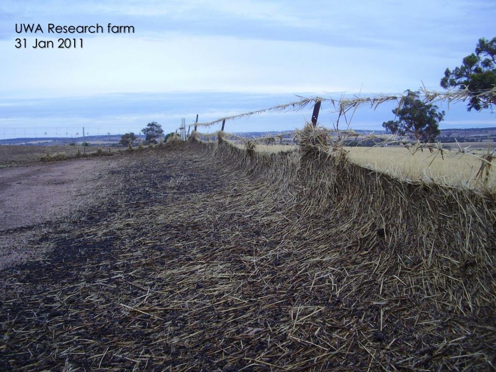 UWA Research farm
