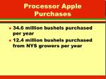 processor apple purchases