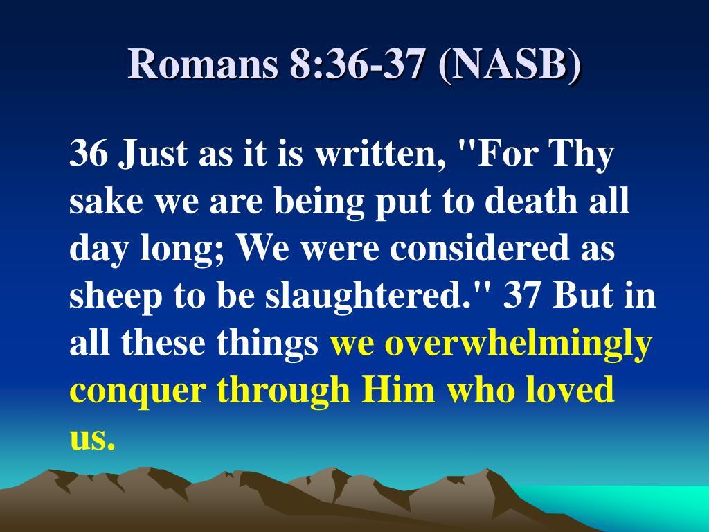 Romans 8:36-37 (NASB)