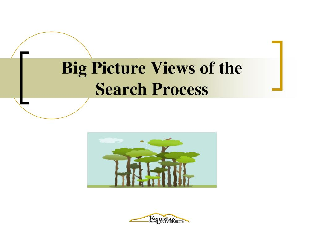 Big Picture Views of the