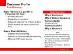 customer profile rapid planning