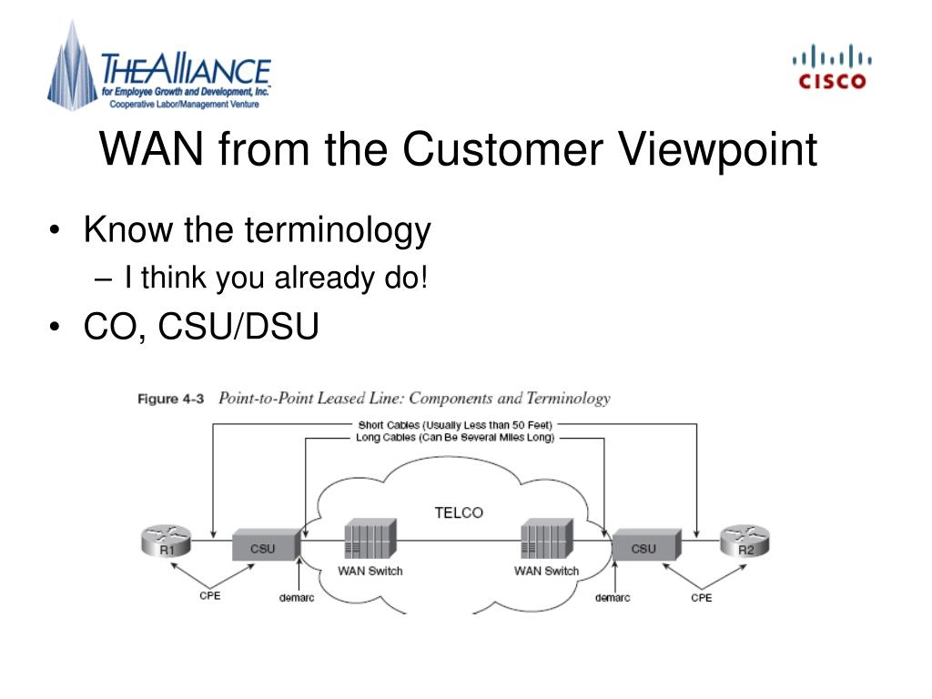 WAN from the Customer Viewpoint