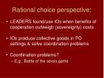 rational choice perspective
