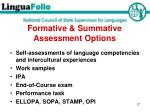 formative summative assessment options