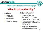 what is interculturality