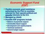 economic support fund esf