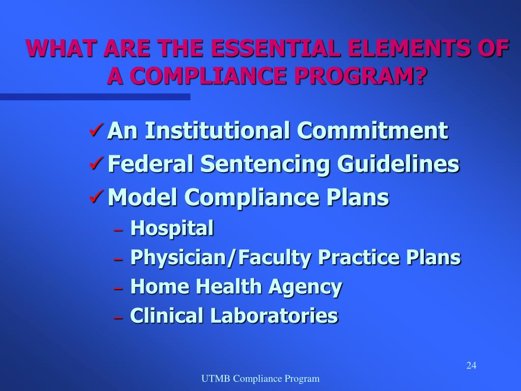 WHAT ARE THE ESSENTIAL ELEMENTS OF A COMPLIANCE PROGRAM?