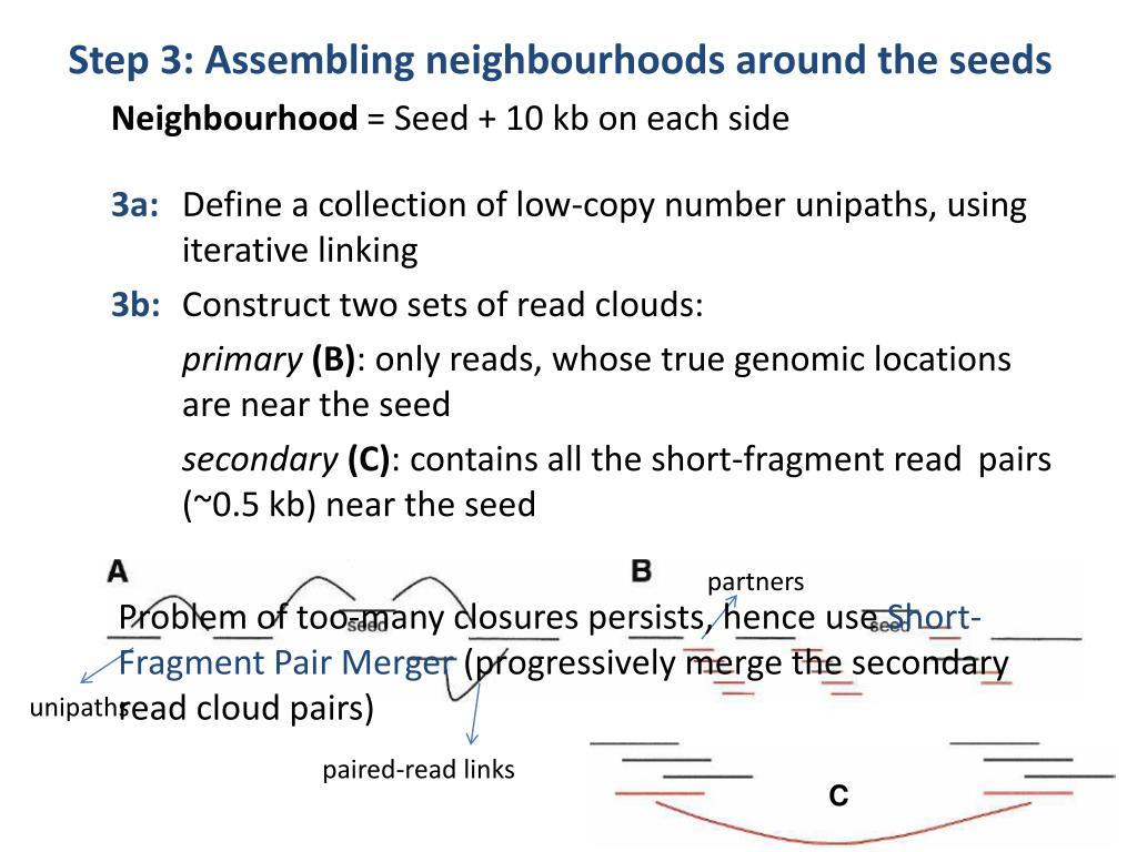 Step 3: Assembling neighbourhoods around the seeds
