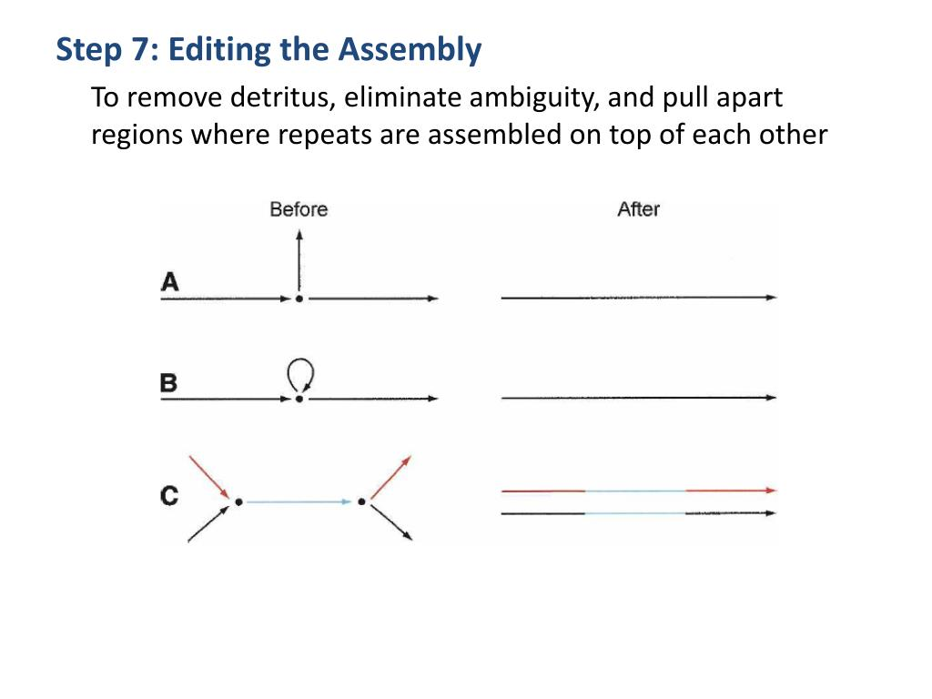 Step 7: Editing the Assembly