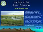 habitats of the llano estacado2