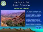 habitats of the llano estacado5