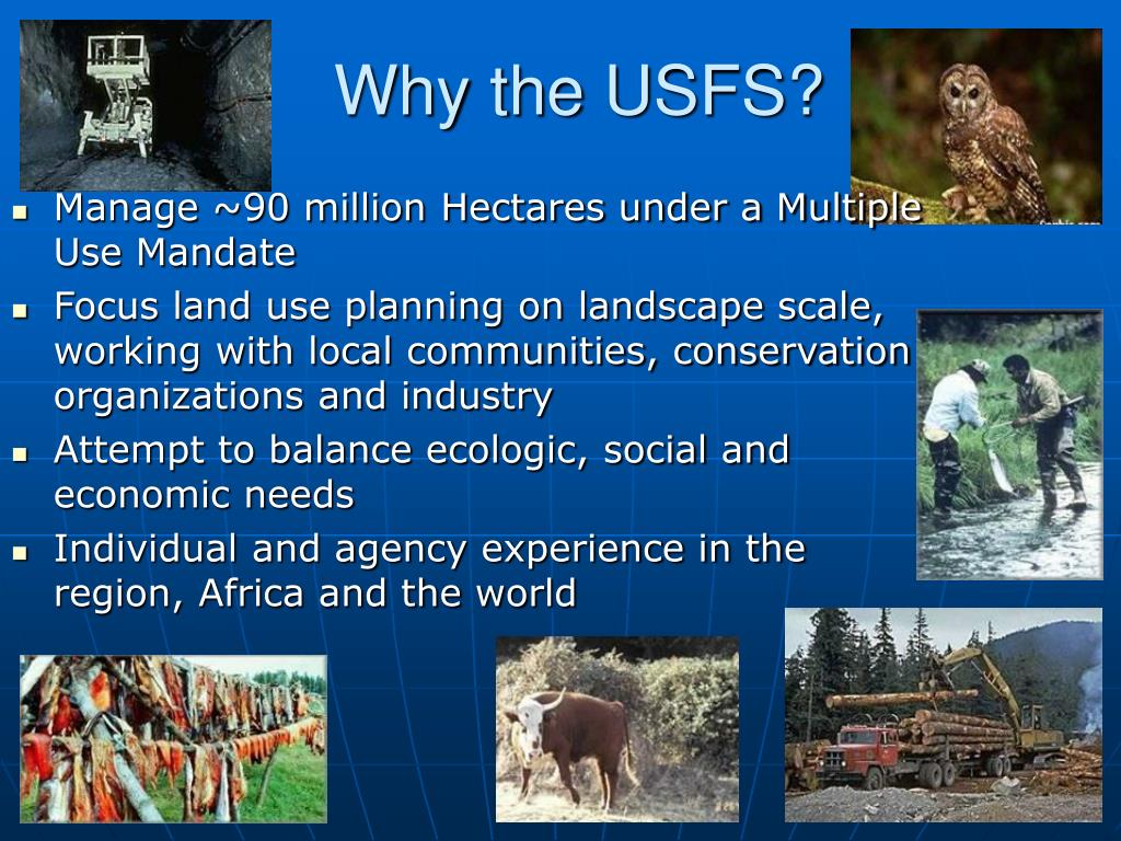 Why the USFS?