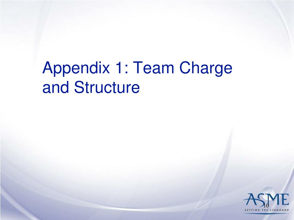 Appendix 1: Team Charge and Structure