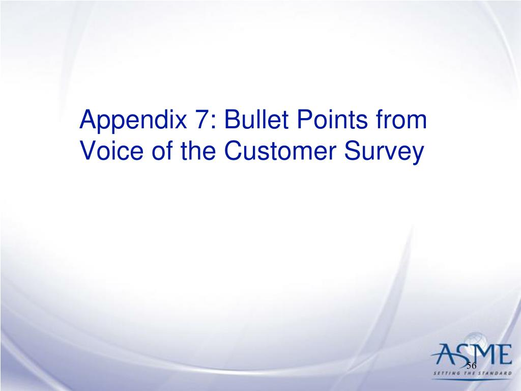 Appendix 7: Bullet Points from Voice of the Customer Survey
