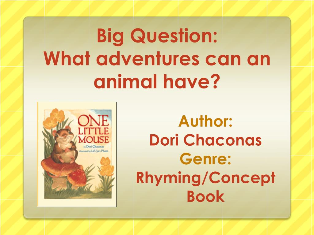 big question what adventures can an animal have