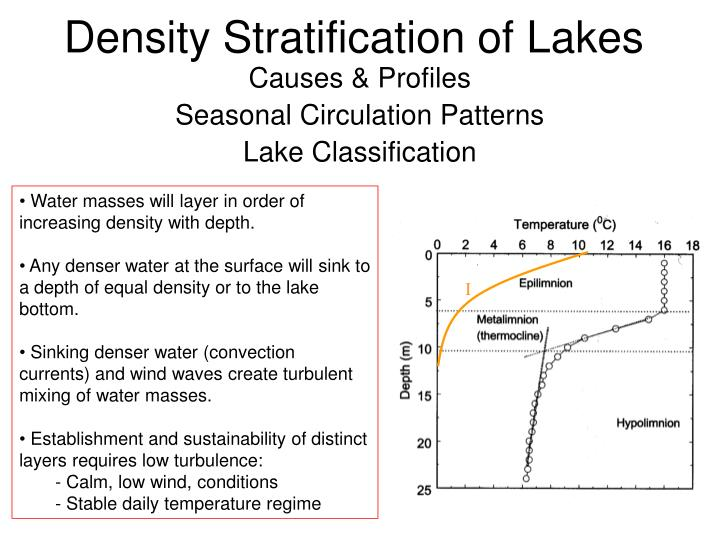 Density stratification of lakes