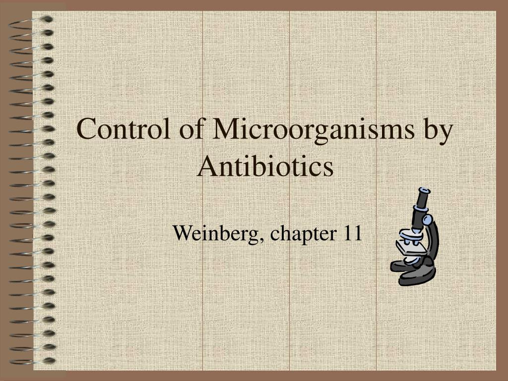 control of microorganisms by antibiotics l.