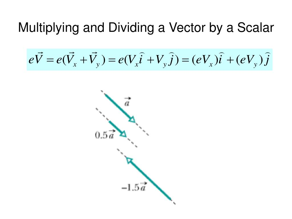 Multiplying and Dividing a Vector by a Scalar