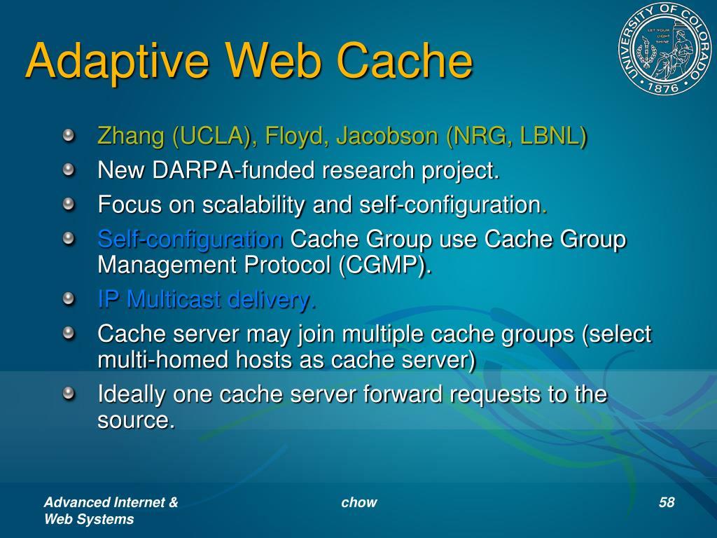 Adaptive Web Cache