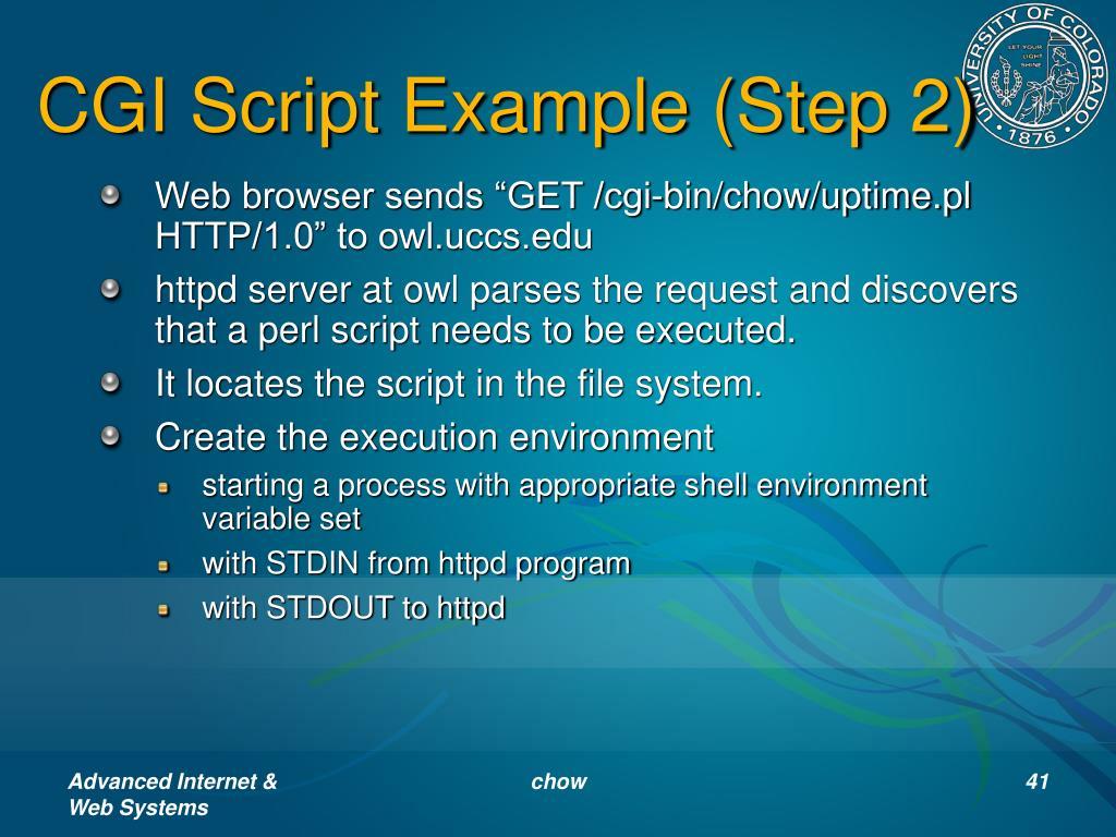 CGI Script Example (Step 2)