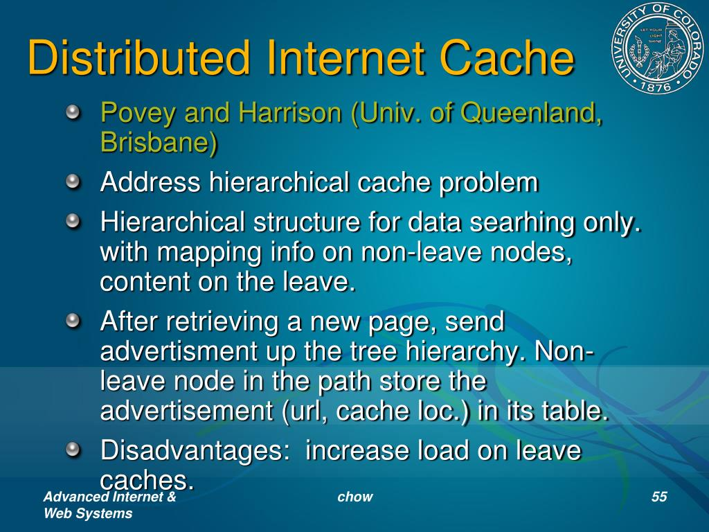 Distributed Internet Cache