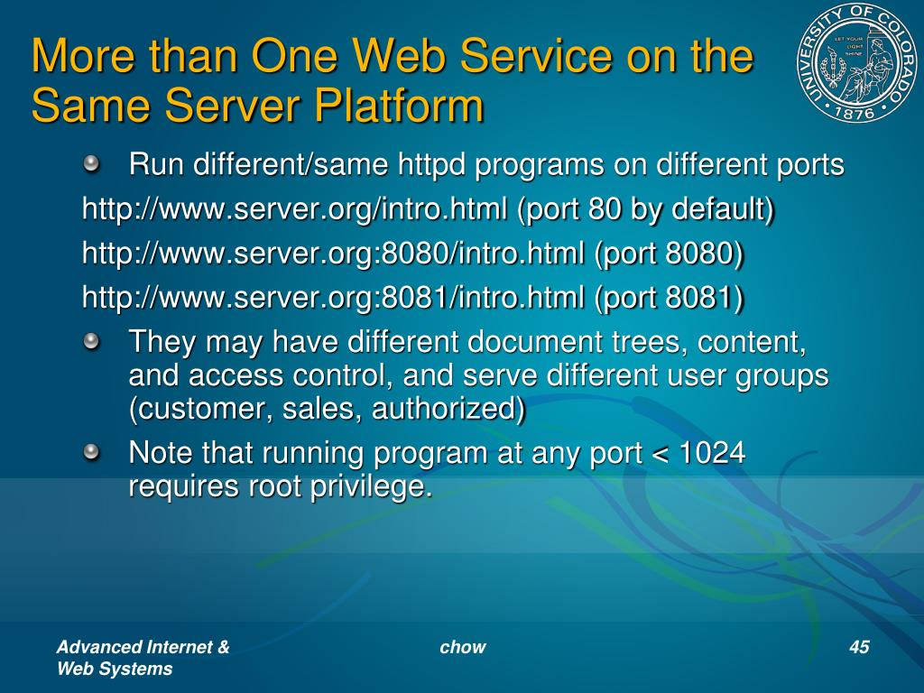 More than One Web Service on the Same Server Platform