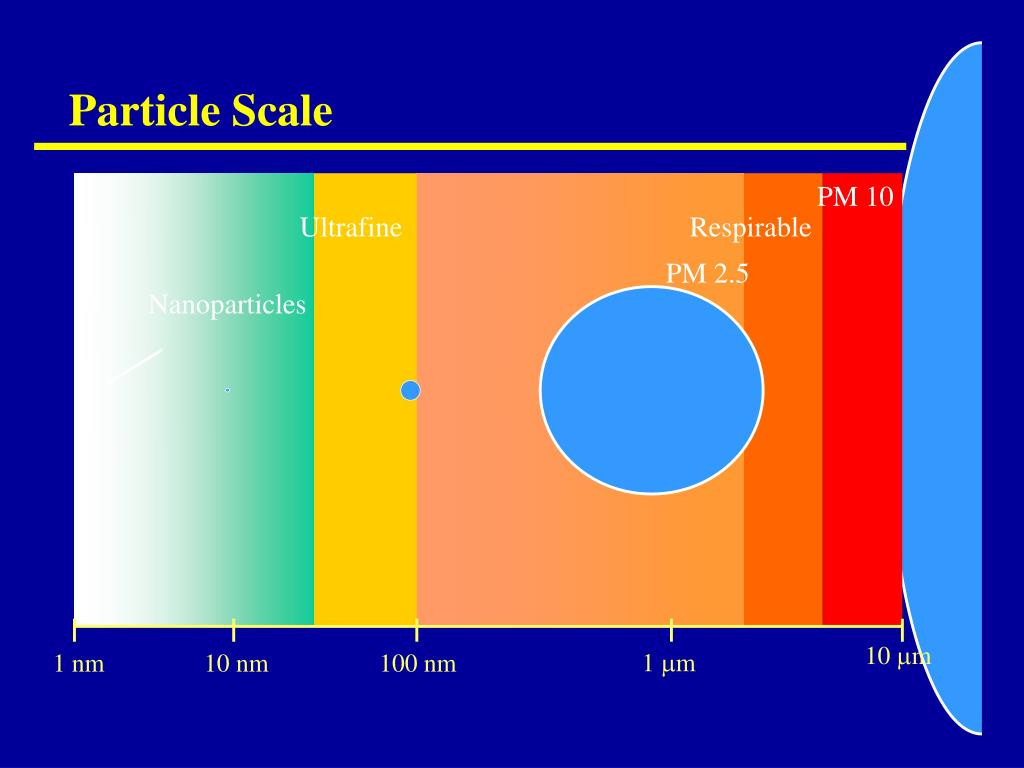 Particle Scale