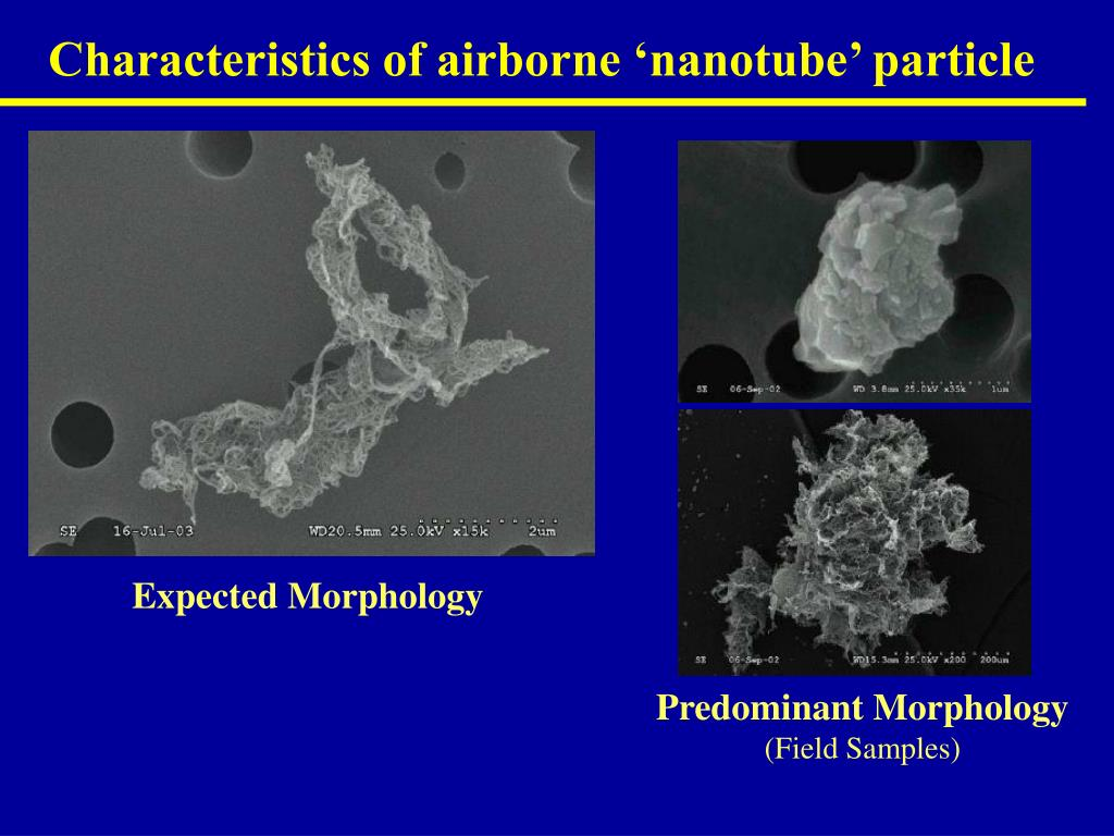 Characteristics of airborne 'nanotube' particle