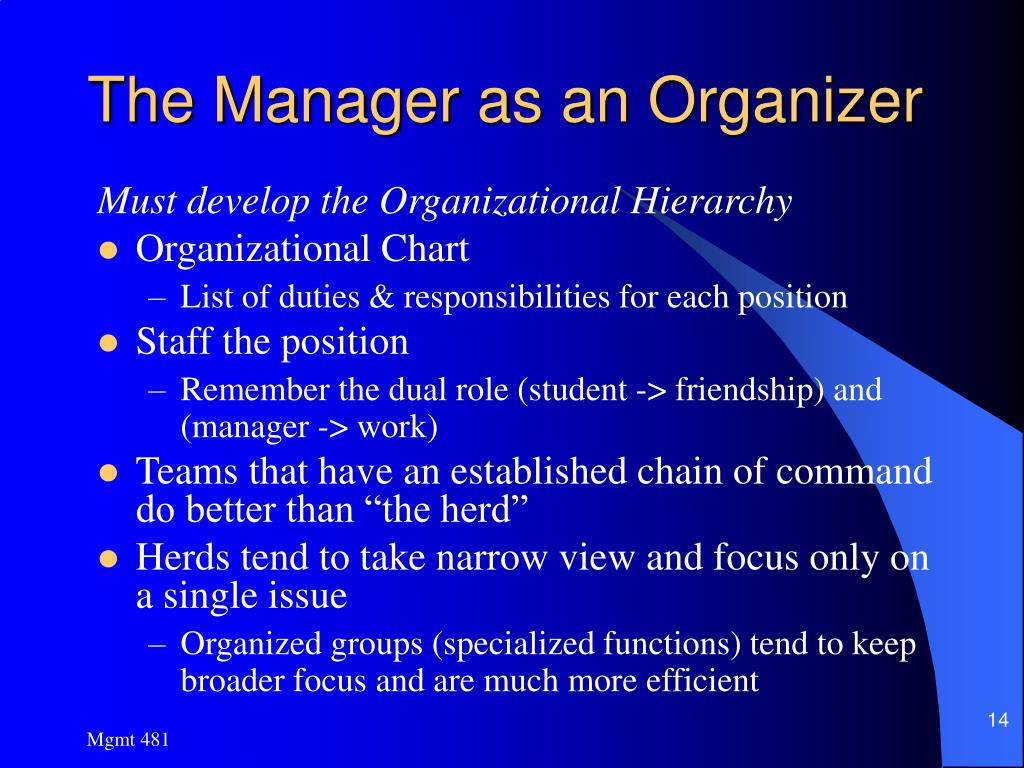 The Manager as an Organizer