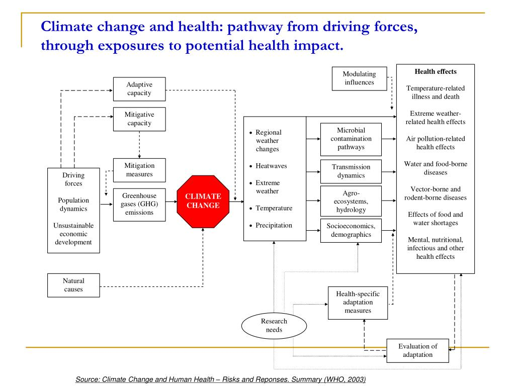 Climate change and health: pathway from driving forces, through exposures to potential health impact.