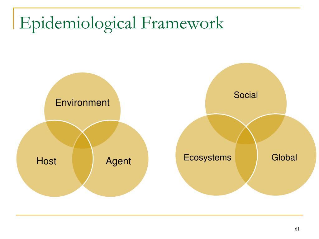 Epidemiological Framework