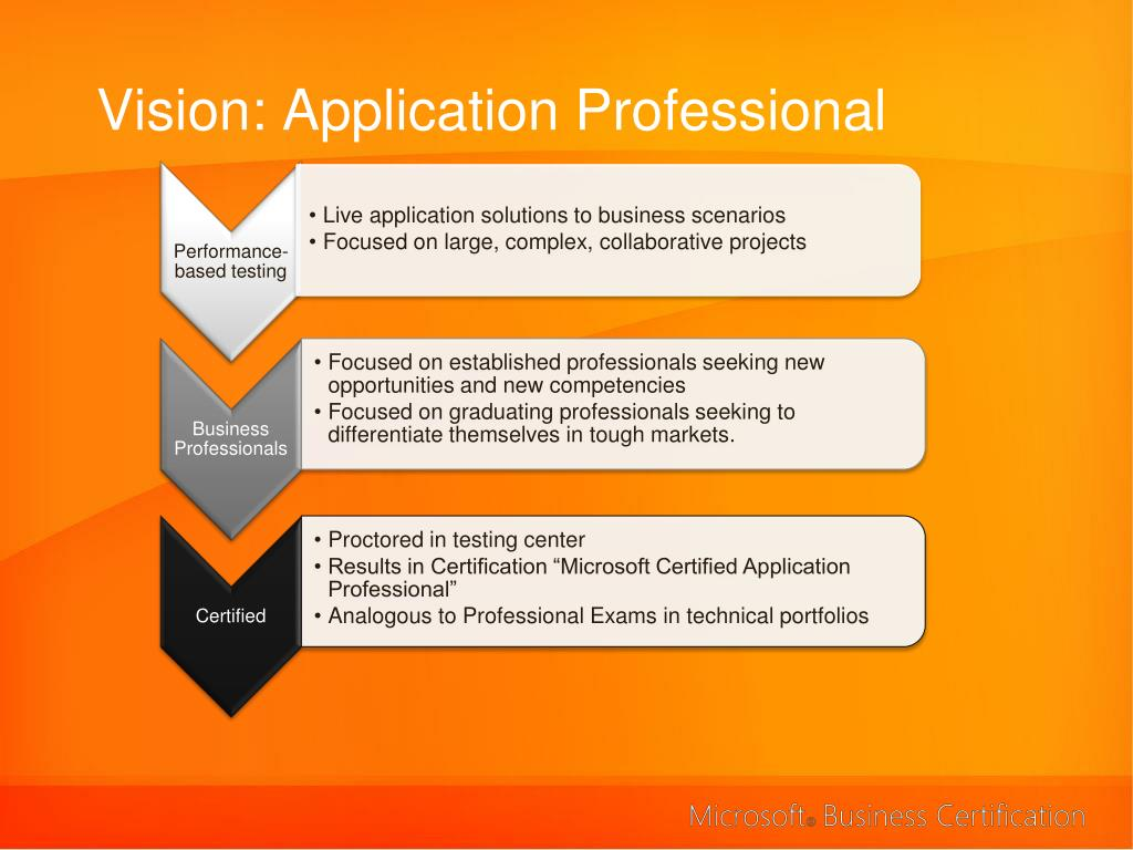 Vision: Application Professional