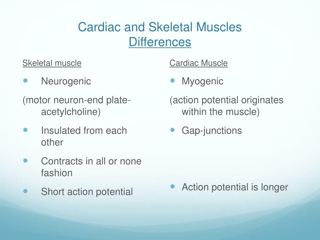 Cardiac and Skeletal Muscles