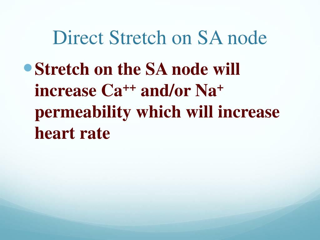 Direct Stretch on SA node