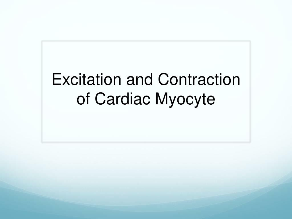 Excitation and Contraction