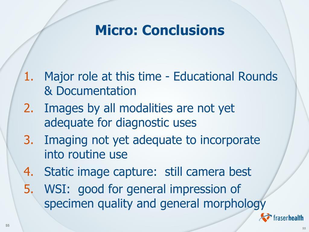 Micro: Conclusions
