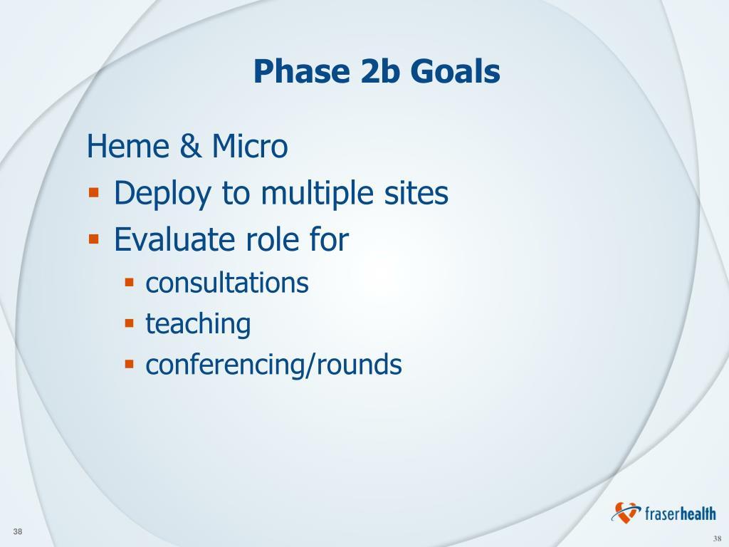 Phase 2b Goals