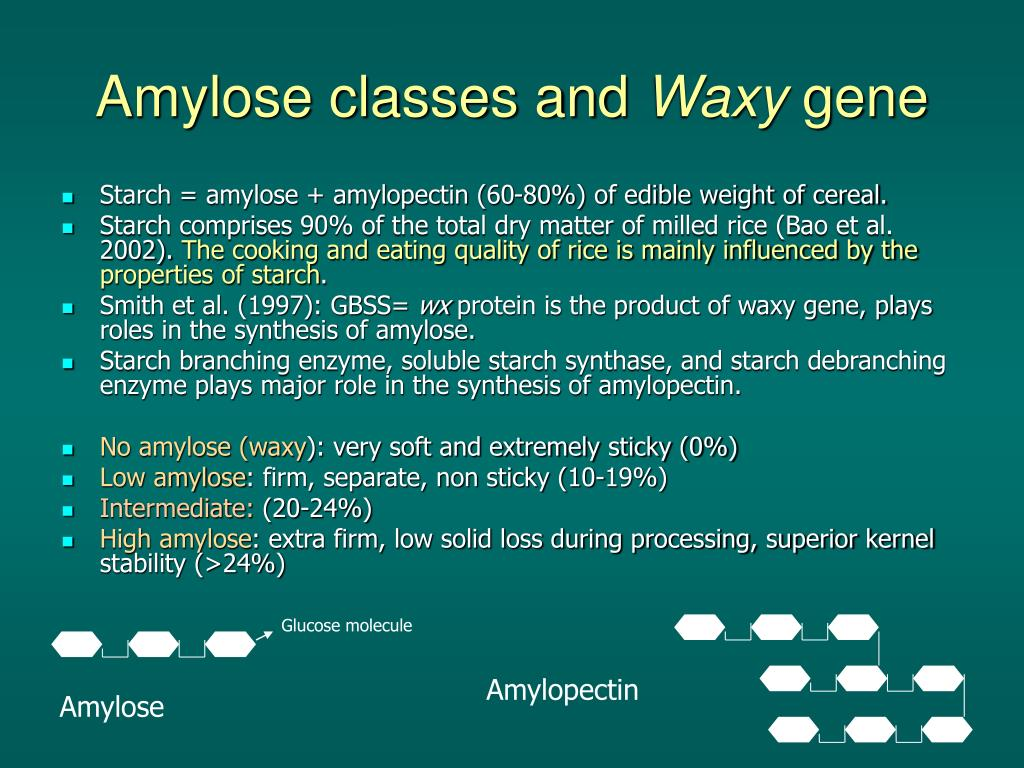 Amylose classes and