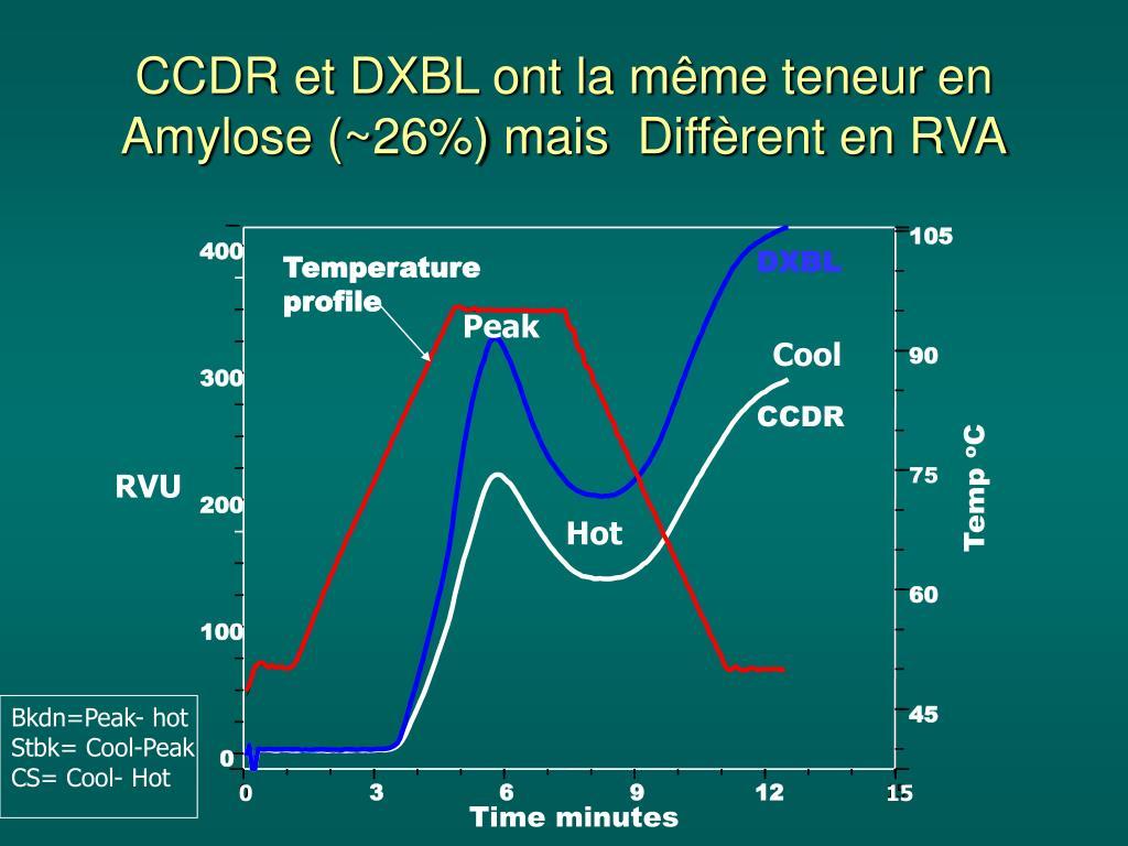 CCDR et DXBL ont la même teneur en Amylose (~26%) mais  Diff