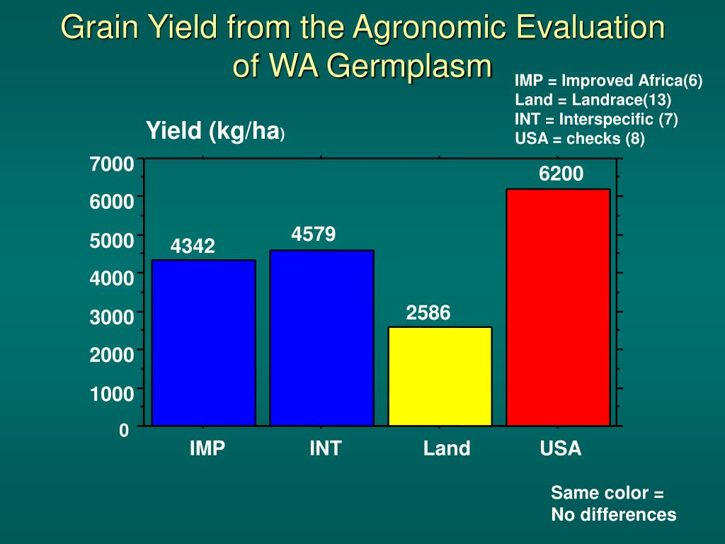 Yield (kg/ha