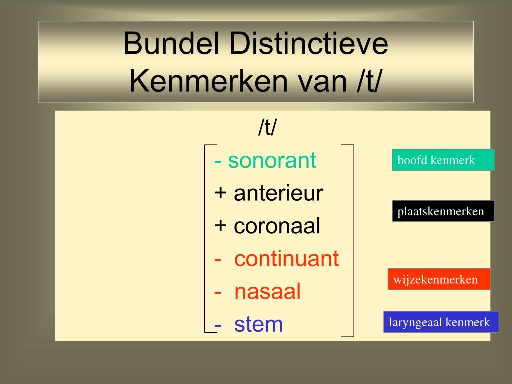 Bundel Distinctieve Kenmerken van /t/