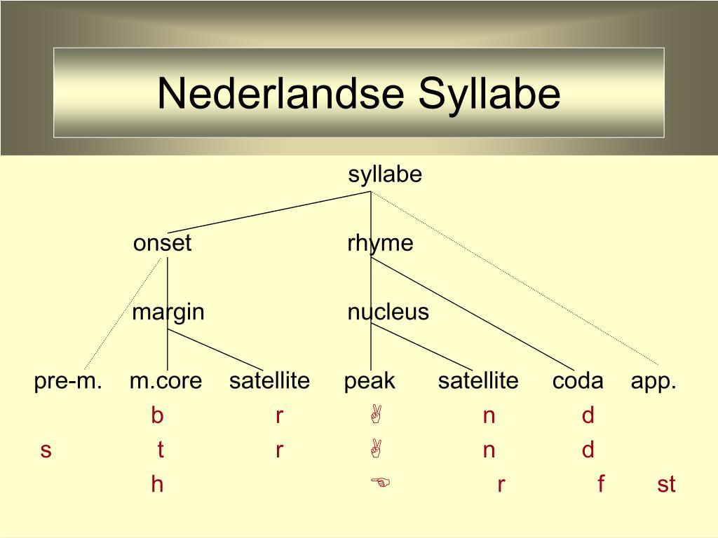 Nederlandse Syllabe