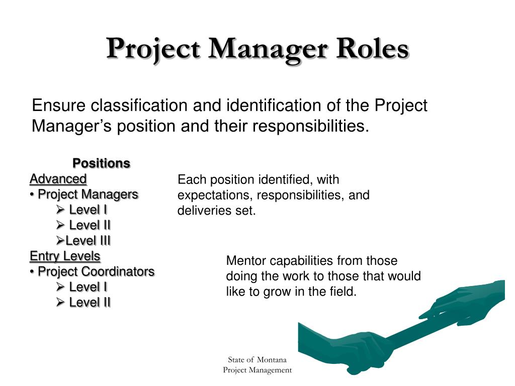 Project Manager Roles