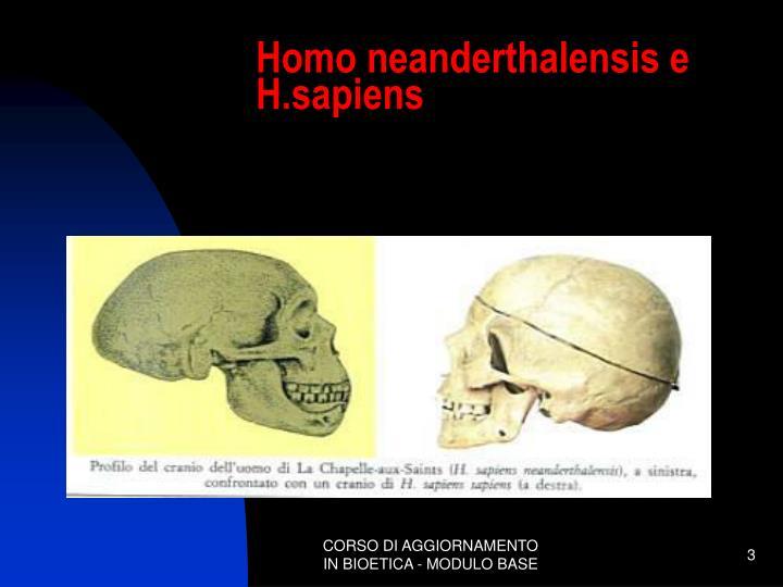 Homo neanderthalensis e h sapiens